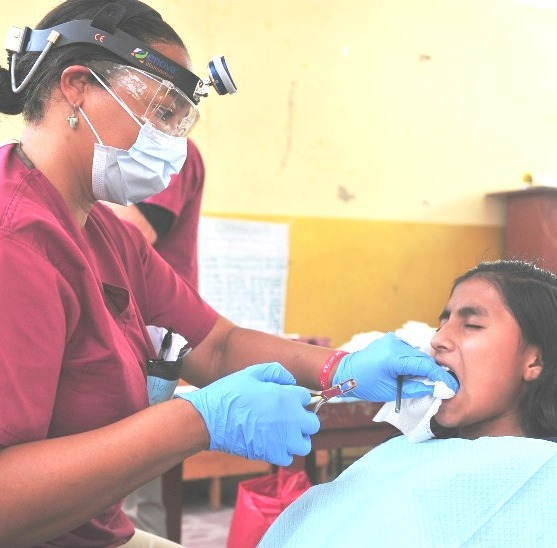 dentist small Admission in BDS