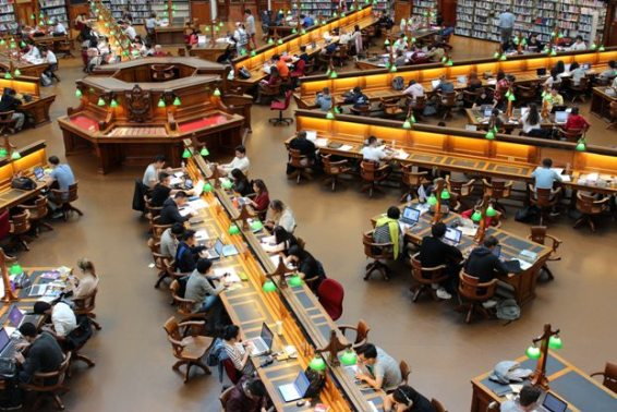 library-science-courses