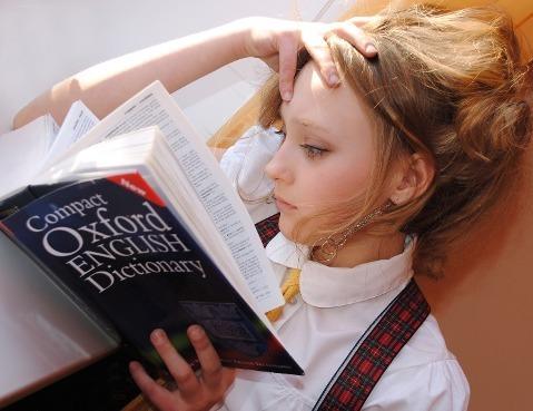 language 60kb Career in Foreign Language